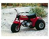 1980 Honda ATC70 3-Wheel ATV Factory Photo