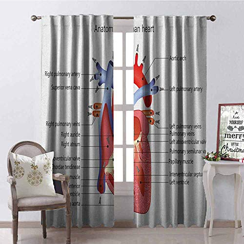 GloriaJohnson Educational Shading Insulated Curtain Medical Structure of The Hearts Human Body Anatomy Organ Veins Cardiology Soundproof Shade W52 x L84 Inch Coral Red Blue