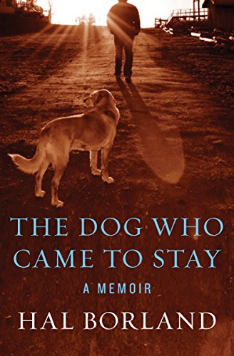 The dog who came to stay a memoir kindle edition by hal borland the dog who came to stay a memoir by borland hal fandeluxe Image collections