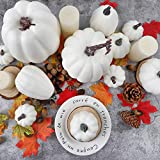 FUNARTY 16pcs Artificial White Pumpkin Harvest