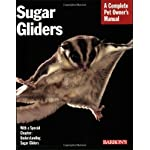 Sugar Gliders (Complete Pet Owner's Manual) Paperback – March 1, 2008
