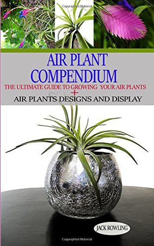 Air Plant Compendium: The Ultimate Guide to Growing Your Air Plants + Air Plants Design and Display