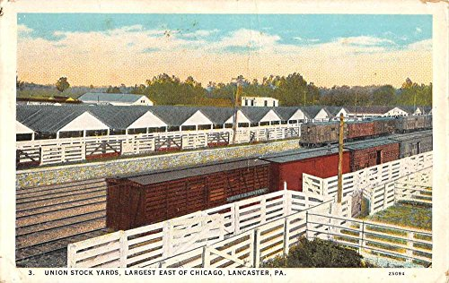 Lancaster Pennsylvania Union Stock Yards Birdseye View Antique Postcard (Pennsylvania Stock)