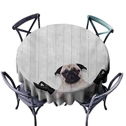 Snadkil Wrinkle Resistant Tablecloth Animal Spiritual Funny Bulldog with Leather Gloves on Wood Board Funny Cute Image Print Black White Indoor Outdoor Camping Picnic -