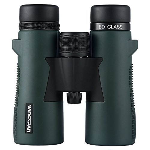 Feeder Green Roof (Wingspan Optics Odyssey UltraHD 8x42 Bird Watching Binoculars for Adults With ED Glass. Specially Designed for Enhanced Bird Watching with ED Glass, Phase Coating, Close Focus, and Wide Field of View)