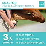 Horse Joint Supplement - New Larger Size