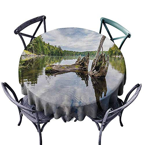 VIVIDX Washable Round Tablecloth,Driftwood,Remains of a White Cedar Tree Trunk in The Lake and The Sky Digital Image,Party Decorations Table Cover Cloth,63 INCH,Green Pale Grey ()