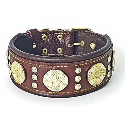 Bestia Maximus genuine leather dog collar, Large breeds, cane corso, Rottweiler, Boxer, Bullmastiff, Dogo, Quality dog collar, 100% leather, studded, M-XXL size, 2.5 inch wide. padded. Made in Europe! (Leather Studded Nappa)