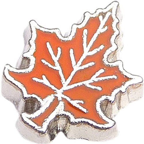 Orange Leaf Floating Locket -