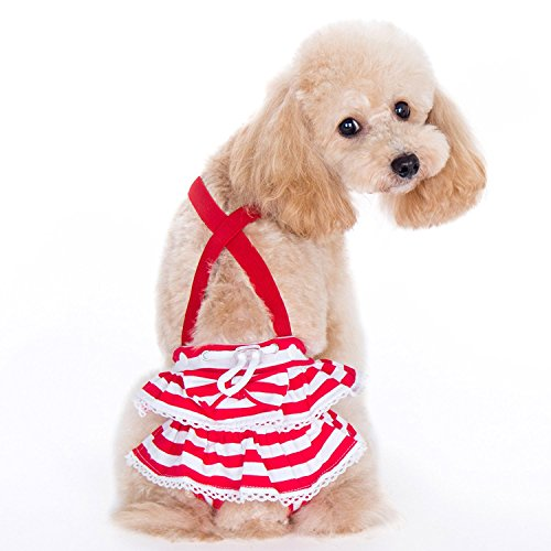 Alfie Pet - Charlotte Diaper Dog Sanitary Pantie with Suspender for Girl Dogs - Color: Red, Size: Large ()