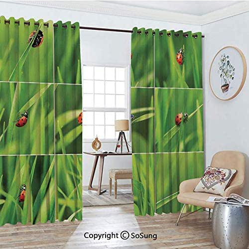 Blackout Window Curtains,Ladybug over Fresh Grass Collection Divided Collage Vibrant Life Lawn Foliage Theme Living Room Bedroom Thermal Insulated Window Drapes 2 Panel Set, 54