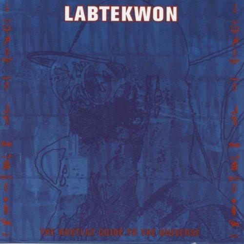 Vinilo : Labtekwon - Hustlaz Guide To The Universe (LP Vinyl)