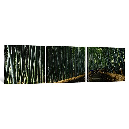 Kyoto Kinki Japan (iCanvasART 3 Piece Stepped walkway passing through a bamboo Forest, Arashiyama, Kyoto Prefecture, Kinki Region, Honshu, Japan Canvas Print by Panoramic Images, 36 x 12/1.5