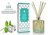 Luxe Home Iced Mint Fragrance Reed Diffuser Oil & Bamboo Sticks | Cool, Lively Peppermint & Vanilla Home Fragrance Oil | Great Home Gift Idea for an Essential Oil Aromatherapy Lover