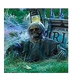 Grave Ground Breaker Skull with Hair