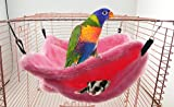 Qin ChenChen Pet Pocket Snuggle Hammock Bird Tent Nest Random color