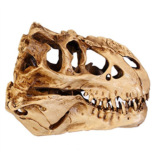 Gmask Resin Mini Tyrannosaurus Rex Skull Model Replica -