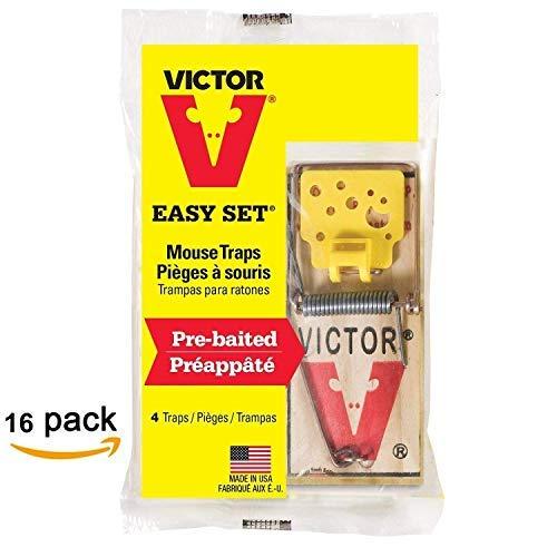 Victor EZ set mouse trap (Pack of - Baits Ez