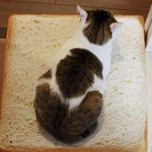 HAPPYX Cama de gato Cama en forma de pan sandwich, Soft Warm Máquina Lavable Microfiber Bolstered diseño moderno Deluxe Pet Cat almohadilla cama nido sofá ...
