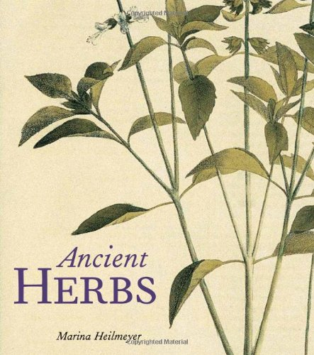 Ancient Herbs (Plant In Stock)