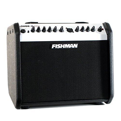 Fishman Loudbox Performer Guitarra Acústica Amplificador, LE negro y blanco, 60 watts, dos vías