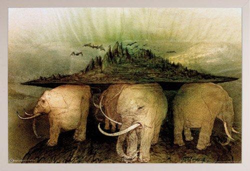 Elephant World Poster in a White Plastic Frame  29295-PSA009