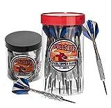 Bullseye Steel Tip Darts Bundle - 24 Pack of 21g Metal Tip Darts Plus Dart Accessory Kit with 7 Essential Accessories Skill Levels