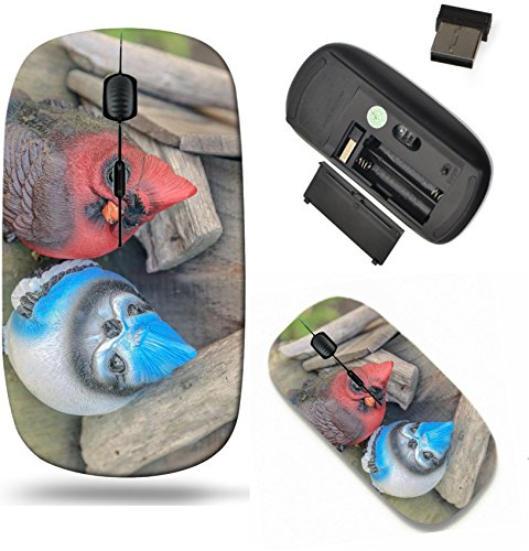 Liili Wireless Mouse Travel 2.4G Wireless Mice with USB Receiver, Click with 1000 DPI for notebook, pc, laptop, computer, mac book Cartoon style cardinal and bluejay statue on top of - Mouse Cardinals Wireless