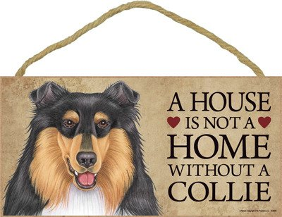 (SJT63990) A house is not a home without a Collie (tri-colored) wood sign plaque 5