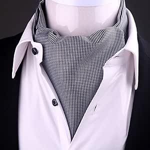 LIANGJUN Corbata Elegante de Seda para Hombre, Bufanda de Camisa ...