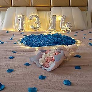HO2NLE 2000 Pcs Artificial Flowers Silk Rose Petals Wholesale Home Party Ceremony Wedding Decoration (Blue) 2