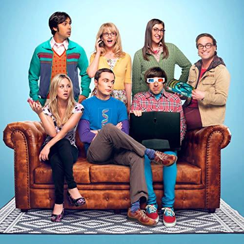 Youngpin Big Bang Theory Series Finale Recap Art Poster Print,Unframed 20x20 Inches (Big Bang Theory Wall Art)