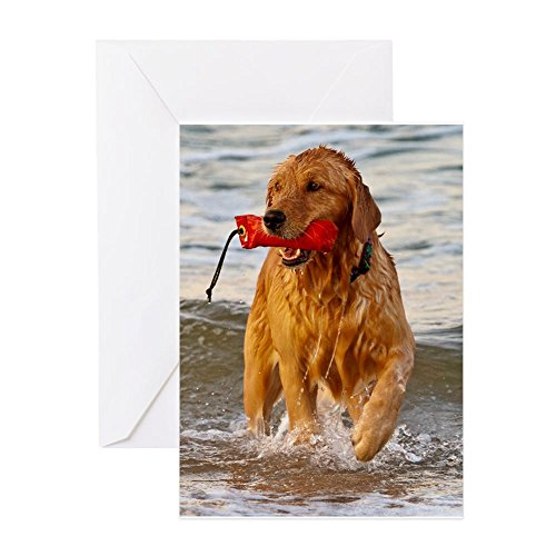 CafePress Golden Retriever 9 Greeting Card, Note Card, Birthday Card, Blank Inside Matte ()