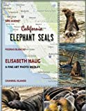 img - for California Elephant Seals book / textbook / text book