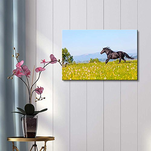 Arab Racer Runs on a Green Summer Meadow Home Deoration Wall Decor ing