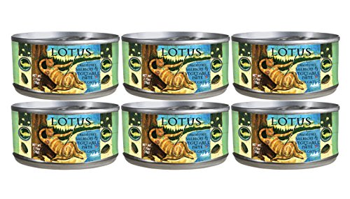 Image of Lotus 2.75 Oz Grain Free Salmon & Vegetable Pate for Cats (Pack of 6)