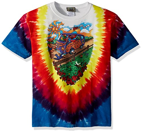 Liquid Blue Kids Grateful Dead Summer Tour Bus Short Sleeve T-Shirt, Tie-Dye, Large -