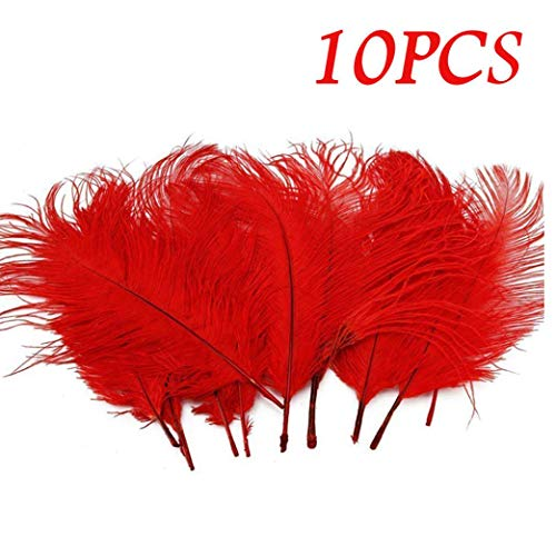 Clearance!!! Hongxin 10PCS Party Fun Special Ungraded Craft Feathers Great For Great Party Wedding Centerpieces Home Decoration Christmas Decor Creative Gift (Red Rooster Chips)