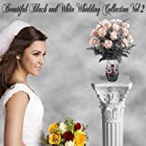 Beautiful Black and White Digital Backgrounds Photography Backdrops Wedding Vol. 2