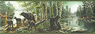 Chesapeake TLL01531B Salvador Bear Necessities Wallpaper Border, Green