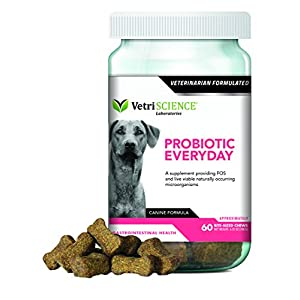 VetriScience Laboratories-Probiotic Everyday for Dogs, Digestive Health Supplement-60 Bite Sized Soft Chews