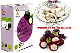 Crispy Freeze dried Fruit Mango Steen ''The Queen of Fruit'' Healthy Snack 100% all Natural Oil-Free 1 Box 30 g. (1.06 Oz)