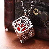 Meenanoom Essential Cube Locket Oil Aromatherapy Diffuser Necklace Pendant Women Jewelry