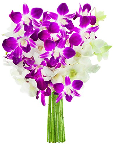 Arranging Daffodils - KaBloom Exotic Opal Orchid  Bouquet of Purple and White Orchids from Thailand