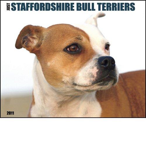 - Just Staffordshire Bull Terriers 2011 Wall Calendar