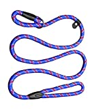 Coolrunner Pet Dog Whisperer Cesar Slip Training Leash Lead Collar (Blue)