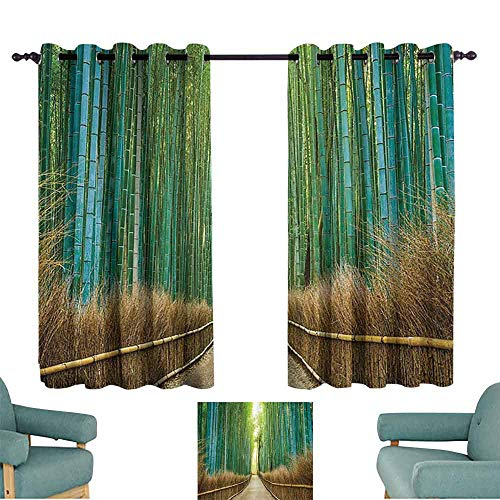 Mannwarehouse Bamboo Forest in Japan Collection Polyester Curtain Panoramic View of Historic Landscape Park Photography Print 70%-80% Light Shading, 2 Panels,72