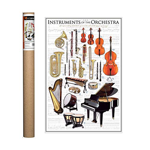 EuroGraphics Instruments of The Orchestra Poster, 36 x 24 inch (Instruments Posters)