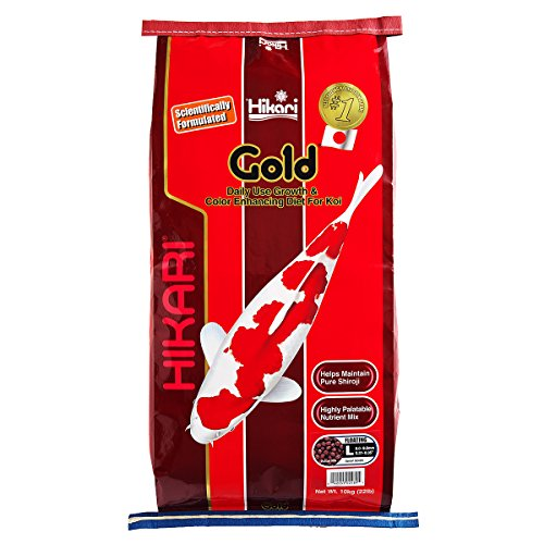 Hikari 22-pound Gold Floating Pellets For Koi And Pond Fish, Large by HIKARI