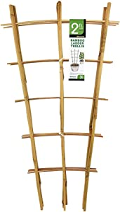 Mininfa Natural Bamboo Trellis 24 Inches Tall, Garden Ladder Trellis, Plant Trellis for Climbing Plants, Vegetables, Pots - 3 Pack